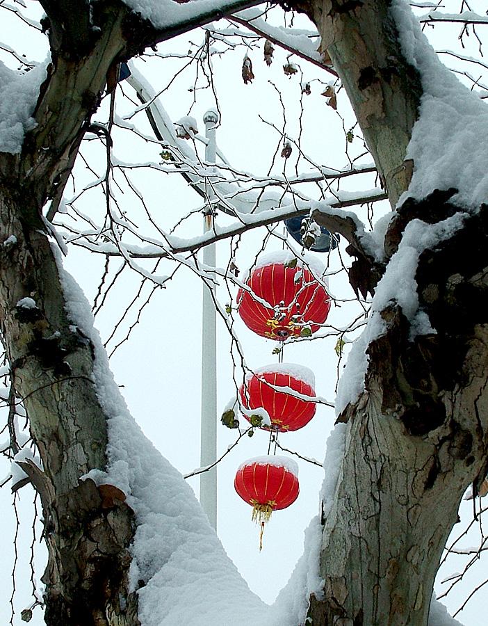 冰雪迎新年.jpg