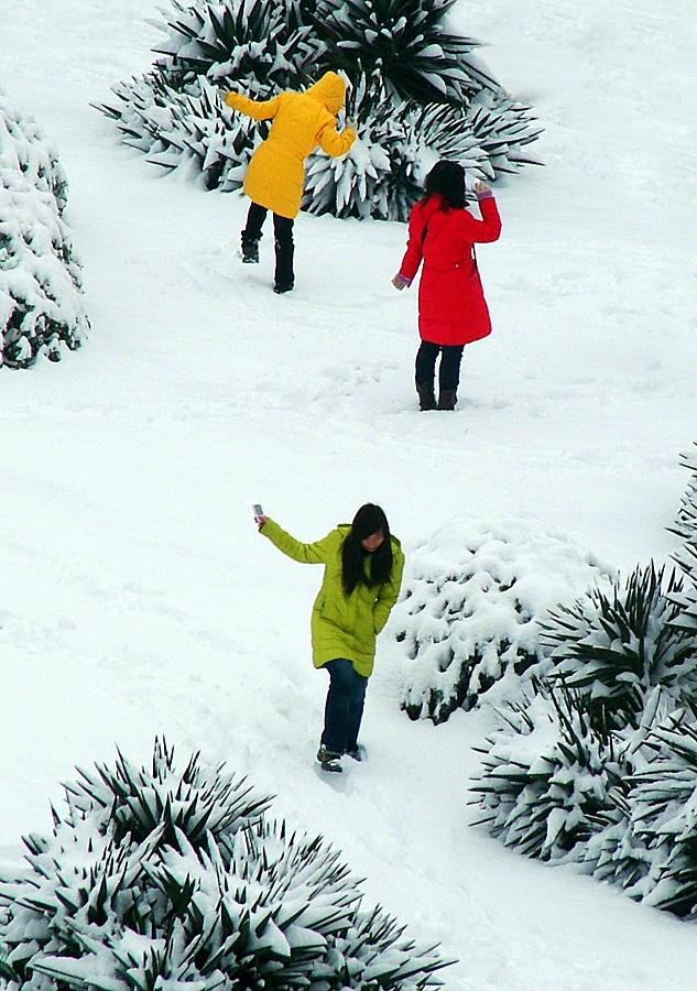 雪中舞蹈.jpg