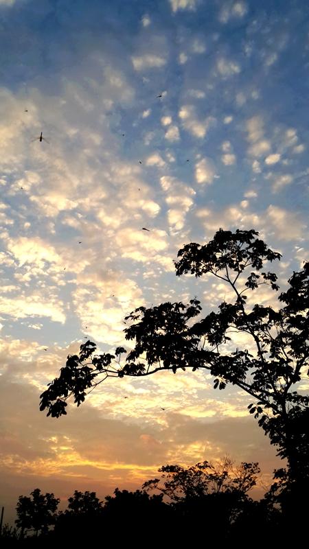 2014-08-02_20.22_.25_.jpg