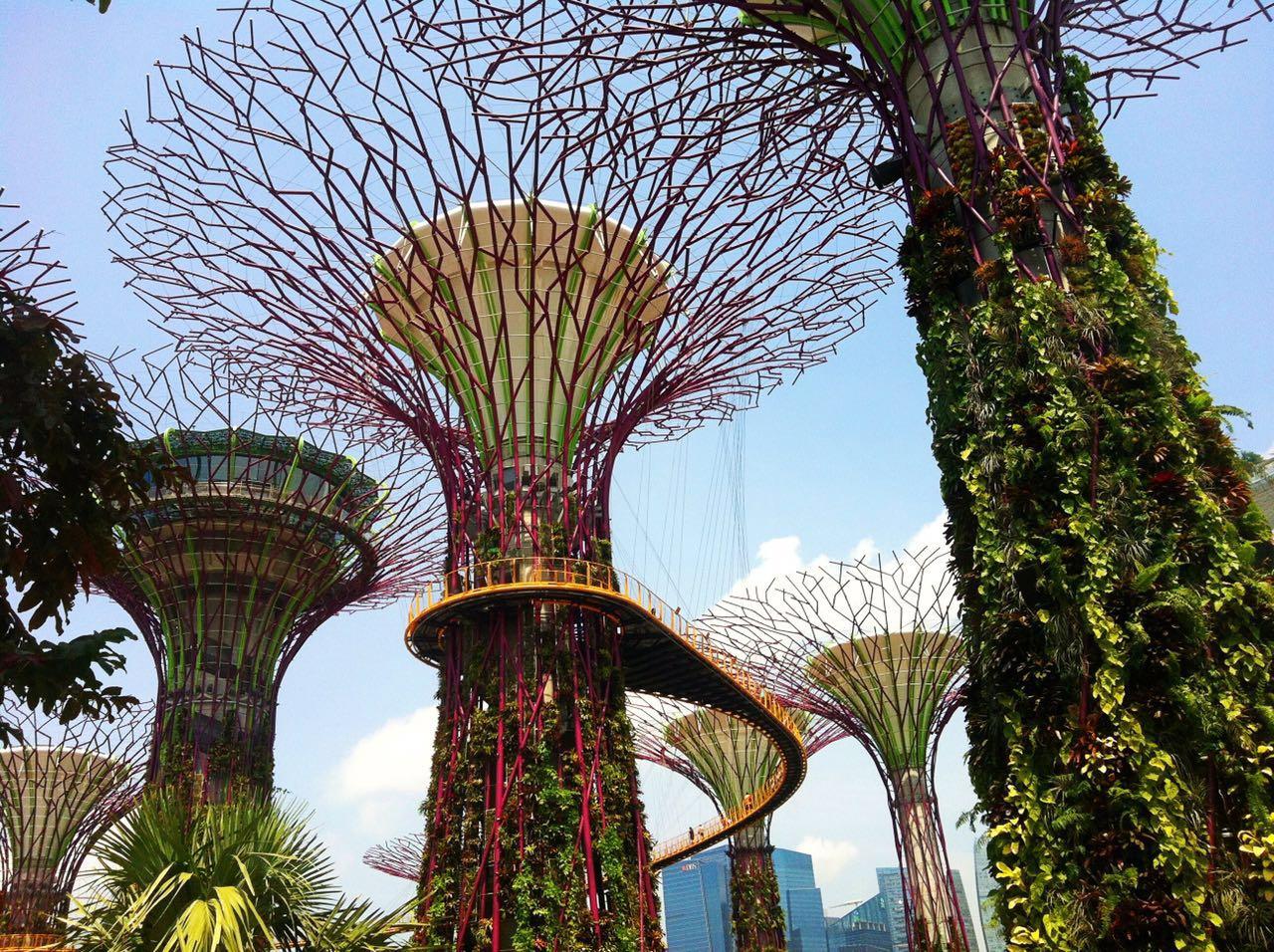 20151001 新加坡滨海湾花园